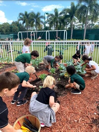 Gr. 1 Gardening
